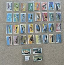 Wills Embassy Cigarette Cards, World of Speed, 35/36, Sleeves, 1981
