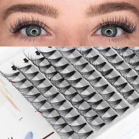 Flare Cluster Individual Eyelash Extensions 20D Pre-fanned Volume Lashes