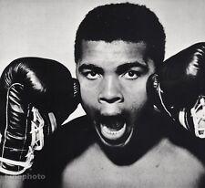 1963 Vintage 16x20 MUHAMMAD ALI Boxing Sports Athlete Photo Art PHILIPPE HALSMAN