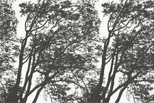Postcard Maija Isola Marimekko Design: Tuuli,1971 Trees MINT