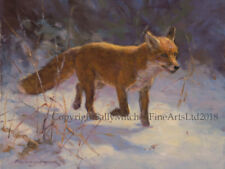 Fox in the Snow Christmas cards pack of 10 by F Haycock C557X