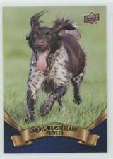 2018 Upper Deck Canine Collection Blue #209 Small Munsterlander Pointer Card 0n8