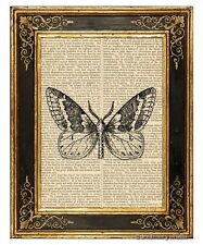 Moth #1 Art Print on Vintage Book Page Garden Insect Home Office Decor Gifts