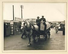 Collectable Antique Historic and Vintage Photographs