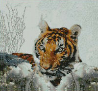 "Siberian Tiger In Snow Counted Cross Stitch Kit 10.9 "" x 10.3"" 27.6cm x 25.8cm"