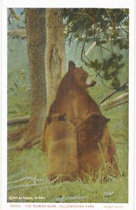 Haynes Yellowstone Park Woman Bear Unused 1930 National Parks
