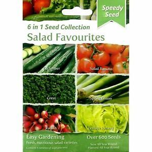 600+ Salad Seeds 🍅 6 in 1 pack Includes Cucumber Tomato Spring Onion Lettuce🥒