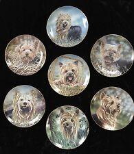 Yorkshire Terrier Morkie Dog Plates Limited Edition Danbury Mint Set 7 Darling