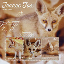 Liberia 2015 MNH Fennec Fox 3v M/S Wild Animals Foxes Vulpes Zerda