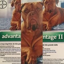 Bayer Advantage II X Large For Dogs 25kg and up