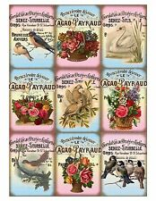 Stunning Birds & Baskets - Card Making Toppers Embellishments