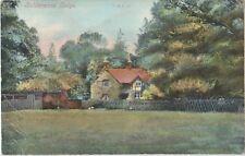 BOLDERWOOD COTTAGE New Forest Wiltshire Vintage PC c1910s