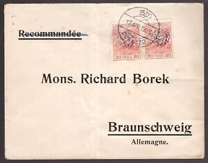 Central Albania, 1915 Tarabosh issue 20 para couple on cover to Germany   -DL97