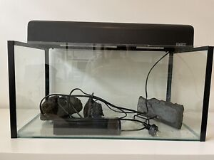 Turtle tank - great starter kit for baby turtle!