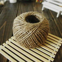 Hot 30M Natural Brown Jute Hessian Burlap Twine Sisal Rustic String Cord Top FO