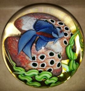 """Large *ORIENT & FLUME* Blue Beta FISH ART Glass PAPERWEIGHT**""""Second""""** """"O & F""""."""