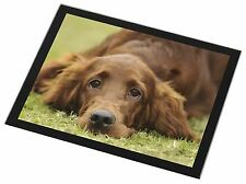Irish Red Setter Puppy Dog Black Rim Glass Placemat Animal Table Gift, AD-RS2GP