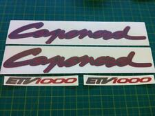 Aprilia ETV 1000 Caponord decals stickers graphics set RSV Adventure Bike