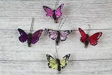 6 Small Real Feather Butterflies Butterfly 5 cm Wedding Bright Colour