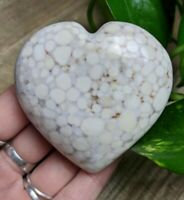 "2.5"" KING COBRA JASPER Puffy Heart H23 Crystal Conglomerate Reiki Charged 5.5oz"