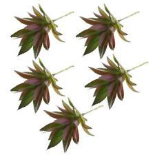 5pcs Artificial Succulent Plants Agave Titanota Cactus Simulation Flowers