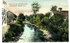 Livingston Manor NY - LITTLE BEAVERKILL FROM BRIDGE - Handcolored Postcard