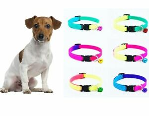 Small Dog/Puppy Adjustable Luminous, Rainbow Coloured Safety Collar With Bell