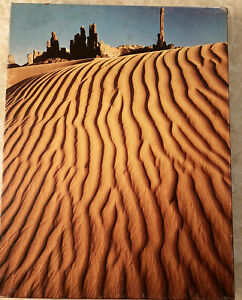 Springbok - Sand Sculpture Over 500 Pcs Jigsaw Puzzle COMPLETE!