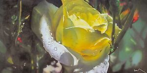 NOAH Hand Signed Large Art Giclee on Canvas THE COLOR OF SPRING Yellow Rose