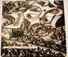 BAROQUE/ ED DELPIRE/ARTS BAROQUES/C.ROY/1963