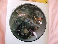 1 autocollant - motif chien  BEAUCERON oreilles non coupées