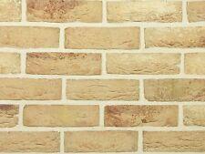 Handform-Verblender WDF BH102 gelb nuanciert Klinker Vormauersteine