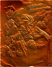 THE GREAT HORNBILL by FREEMAN  EMBOSSED COPPER FOIL