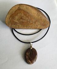118gr  Australian Petrified Wood Specimen & African Petrified Wood Pendant