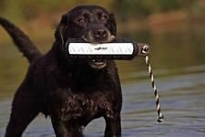 "Avery Greenhead Gear Dog 3"" Black White FLASHER Hexabumper Hexa Bumper Dummy"