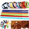 12 x Farbe Welpen ID Halsbänder Klettband Welpenhalsband für Hunde Katze S-2XL