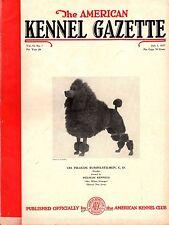 Vintage American Kennel Gazette July 1937 Poodle Cover