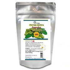 1,000 Caps. Moringa Oleifera Leaf 500 mg. 100% Pure Natural from THAILAND