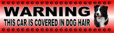 "BORDER COLLIE ""WARNING CAR COVERED IN DOG HAIR"" Car Sticker By Starprint"