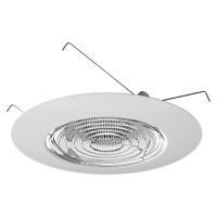 """6"""" INCH RECESSED CAN LIGHT SHOWER FRESNEL GLASS LENS, 60W, WET LOCATION"""