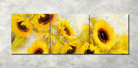 "3PCS 16X16"" Photo Painting on Canvas Wall Decor Art NO frame Sunflowers 901"