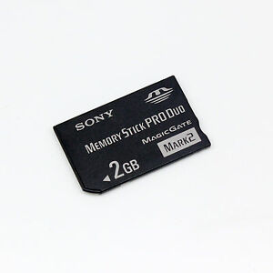 Sony 2GB Memory Stick Pro Duo,MS 2GB Card for Sony Camera Recorder PSP