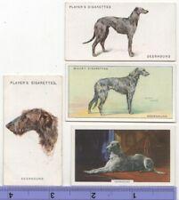 Deerhound Dog Pet Canine 4 Different Vintage Ad Trade Cards #4