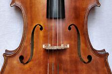 4/4 Cello lab.