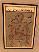 Antique Arab Islamic Illuminated page Human Anatomy Body Tashrih Al Badan After