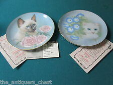 """CAT'S PLATES (2) CLOSEAUT """"Siamese Summer"""" """"Morning Glory""""NIB, with certs [AM11]"""