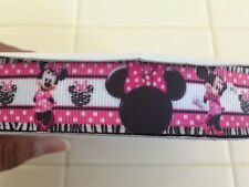Minnie mouse zebra ribbons