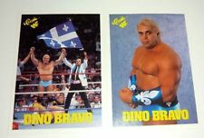 WWF Wrestling Trading Cards