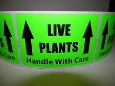 LIVE PLANTS HANDLE WITH CARE 2X3 Warning Sticker Label fluorescent green 250/rl