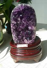 PROFESSIONAL SALE beautiful amethyst crystal cluster geode from uruguay E1437